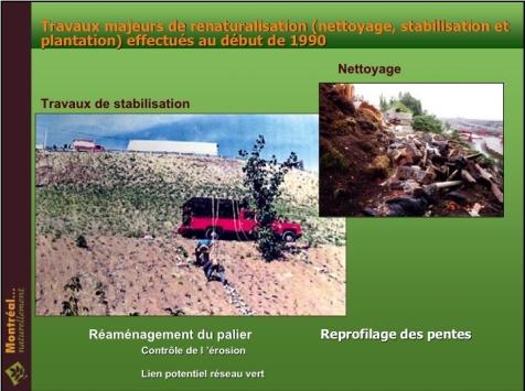 falaise-planting.jpg